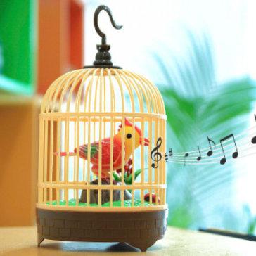 Chim Điện Tử - Hót Nhiều Loại Tiếng Như Thật