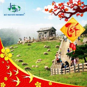 Tour 1 Ngày Khám Phá Nông Trại Cừu - KDL Bình Châu - Biển Hồ Cốc - Khởi Hành Tết Âm Lịch