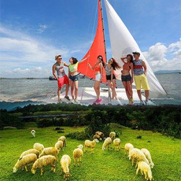 Tour Vũng Tàu 1 Ngày Ảo Diệu Cùng Bến Du Thuyền Marina - Nông Trại Cừu - Khởi Hành Tết Tây, Tết Ta