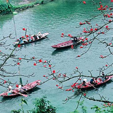 Tour Du Xuân Chùa Hương 01 Ngày, Khởi Hành Hàng Ngày - Cho 01 Người