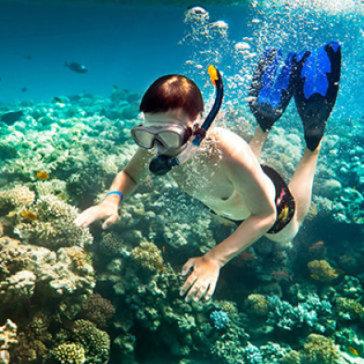 Tour Lặn Bình Khí Ngắm San Hô Nam Đảo Phú Quốc  - 01 Ngày Dành Cho 1 Khách