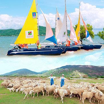 Tour Vũng Tàu 1 Ngày – Khám Phá Nông Trại Cừu – Bến Thuyền Marina