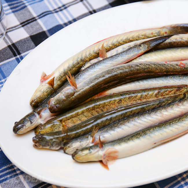 Lẩu Cá Kèo Hấp Dẫn Cho 2 – 3 Người Tại Nhà Hàng Hải Đăng 1
