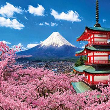 Tour Nhật Bản 5N4Đ Siêu Khuyến Mãi Tokyo - Kawaguchi - Hakone – Fuji