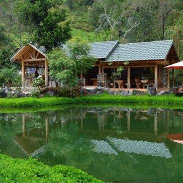 Tour Đà Lạt 1 Ngày - Khám Phá Ma Rừng Lữ Quán - Khởi Hành Hàng Ngày - Dành Cho 1 Khách