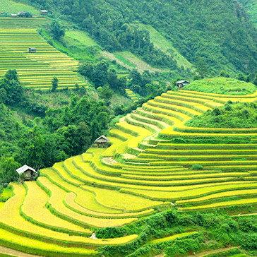 Tour Sapa 2N1Đ Khám Phá Thành Phố Trên Mây – Khởi Hành Từ Hà Nội