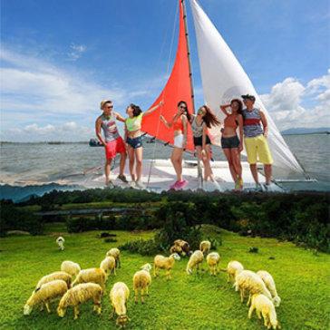 Tour Vũng Tàu 1 Ngày Ảo Diệu Cùng Bến Du Thuyền Marina - Nông Trại Cừu- Khởi Hành Chủ Nhật Hàng Tuần