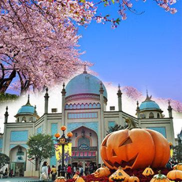 Tour Hàn Quốc Mùa Thu 5N4Đ Khám Phá Seoul – Everland – Đảo Nami – Trọn Gói Bao Gồm Visa