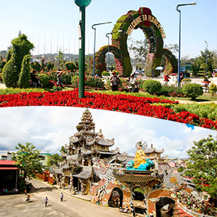 Tour Tết Đà Lạt 3N3Đ Vườn Hoa Cẩm Tú Cầu – Đồi Chè Cầu Đất - Langbiang – Linh Quy Pháp Ấn