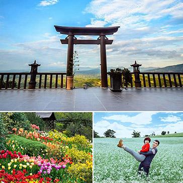 Tour Đà Lạt Du Xuân 2018 3N3Đ – Cổng Trời – Thác Pongour – Chinh Phục Đỉnh Langbiang – Thiên Đường Đất Sét – Vườn Hoa Cẩm Tú Cầu