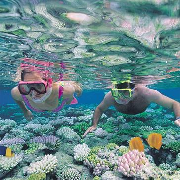 Tour Khám Phá Nha Trang, Du Ngoạn 4 Đảo, Lặn Ngắm San Hô 1 Ngày