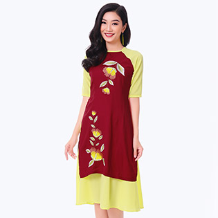 Set Áo Dài Thêu + Chân Váy Xòe