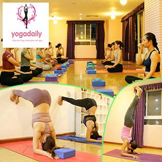 Khóa Học Yoga Cơ Bản Cho Người Mới Tập Yoga Tại Yogadaily