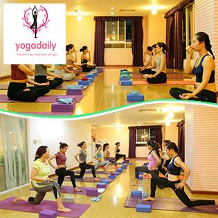Ưu Đãi Sốc - Khóa Học Đào Tạo Huấn Luyện Viên Yoga Tại Yogadaily