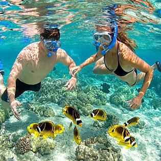 Tour Đảo Ngọc Phú Quốc 3N3Đ – Khám Phá Nam Đảo -  Câu Cá -  Lặn Ngắm San Hô – Vườn Thú Hoang Dã Safari – Đi Xe Giường Nằm
