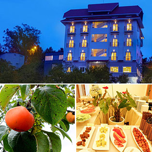 Hồng Môn Villa 3* Đà Lạt 3N2Đ - Gồm Ăn Sáng + Ăn Trưa - Đặc Biệt Miễn Phí Hái Hồng Đà Lạt Tươi Ngon Đem Về