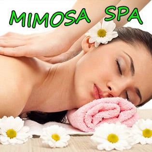 90 Phút Massage Body Thư Giãn + Thanh Tẩy Tế Bào Chết Cho Da Chỉ Có Tại Mimosa Spa