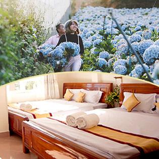 Combo Đà Lạt Cực Hot Cho 02 Người - 3N2Đ Phòng Standard + Tour Tham Quan Nhà Vườn – Những Loài Hoa Đẹp Nhất Đà Lạt