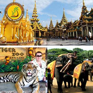 Tour Tết Kỷ Hợi Thái Lan 5N4Đ Giá Cực Shock: Tặng Buffet 86 Tầng – Trại Hổ Tiger Zoo, Cưỡi Voi, Vườn Chim Hải Âu, Massage Thái Cổ Truyền - Đảo San Hô Tuyệt Đẹp - Nhiều Điểm Đến Mới Hot Nhất