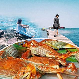 Tour Phú Quốc 1 Ngày – Tham Quan Bắc Đảo – Rượu Sim - Nhà Thùng Mắm Phú Quốc - Trại Nuôi Ong - Vườn Tiêu - Mũi Gành Dầu - Bãi Biển Rạch Vẹm. Khởi Hành Hàng Ngày