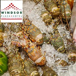 Windsor Plaza Hotel - Buffet 5* Tối Thứ 2 - Thứ 6 Tôm Hùm & Hải Sản Cao Cấp - Free Bia, Nước Ngọt