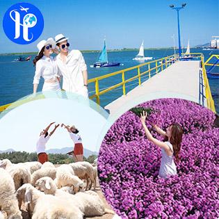 Tour Vũng Tàu 1 Ngày Ảo Diệu Cùng Bến Du Thuyền Marina – Cánh Đồng Cừu Siêu Dễ Thương - Ngắm Hoa Thạch Thảo - Khởi Hành Chủ Nhật Hàng Tuần