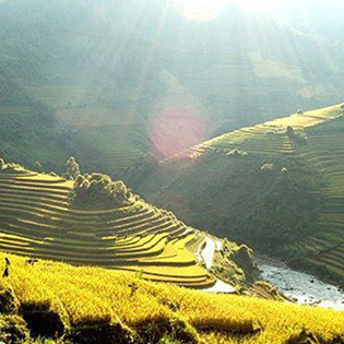 Tour Hà Nội – Mù Cang Chải – Tú Lệ – Nghĩa Lộ 3N2Đ – Khởi Hành T6 - Dành Cho 01 Người