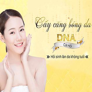 Cấy DNA Cá Hồi – Làm Đẹp Không Phẫu Thuật Cho Vẻ Đẹp Toàn Diện, Căng Bóng, Trắng Mượt Tại Trung Tâm Thẩm Mỹ Saigon's Sun