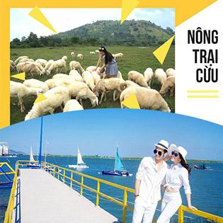 Tour Vũng Tàu 1 Ngày - Nông Trại Cừu - Bến Du Thuyền Marina – Nhà Úp Ngược Siêu Hot