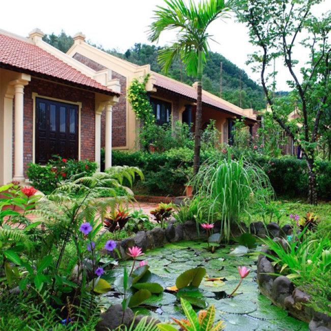 Da Ngoại Cực Chất Ap Dụng Cả Lễ Tết Tại Zen Resort Camping Ha Nội