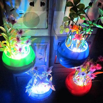 Đèn Ngủ Cảm Ứng Chậu Hoa